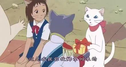 其实猫能听懂自己的名字!它只是懒得搭理你插图