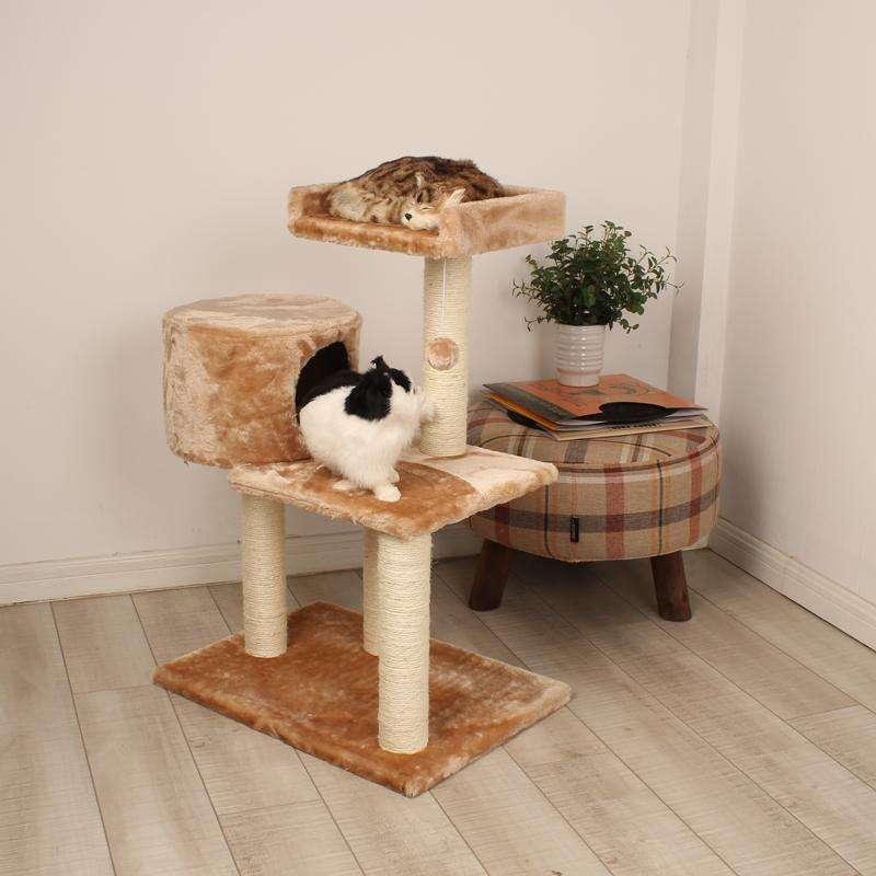 猫咪最喜欢的几种玩具,你都备齐了吗?插图(8)