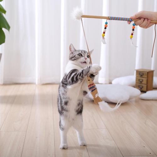 猫咪最喜欢的几种玩具,你都备齐了吗?插图(1)