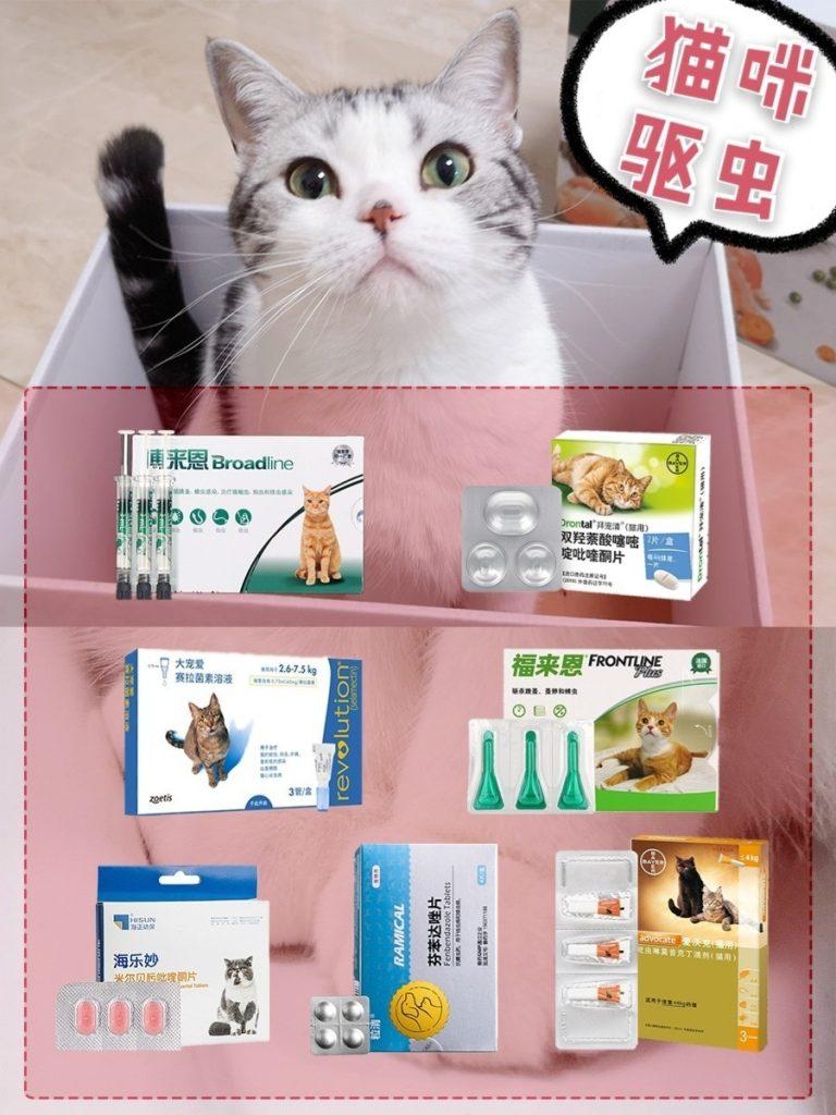 猫咪驱虫科普干货插图(4)