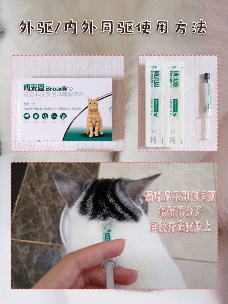 猫咪驱虫科普干货插图